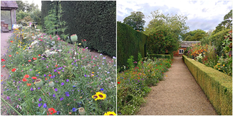 erddig-gardens